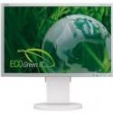 Ekologický monitor NEC.