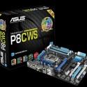 Základní deska Asus P8C WS